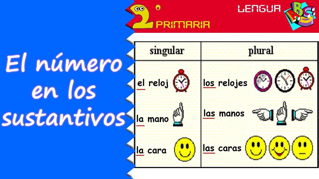 Lengua, 2º Primaria. Tema 8. El número de los sustantivos