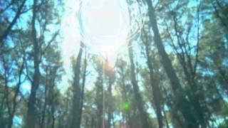 Dragonflies (Cantoma Remix) - Josè Padilla & Kirsty Keatch