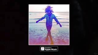 Новый альбом Lenny Kravitz – Raise Vibration
