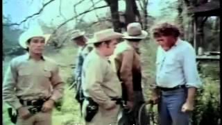 Gator Bait - 1974