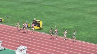 H29千葉県高校総体男子800m決勝
