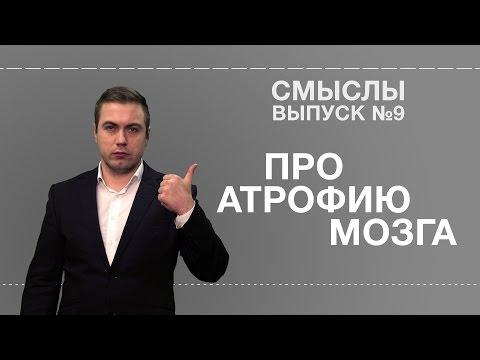 СМЫСЛЫ - Выпуск № 9 Про атрофию мозга