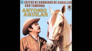 Antonio Aguilar - El Potro Lobo Gateado