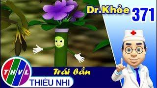 THVL | Dr. Khỏe – Tập 371: Cây nổ - Phần 1