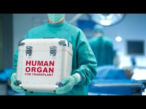 Doctors Plan Organ Harvesting, But He's Not Dead Yet!