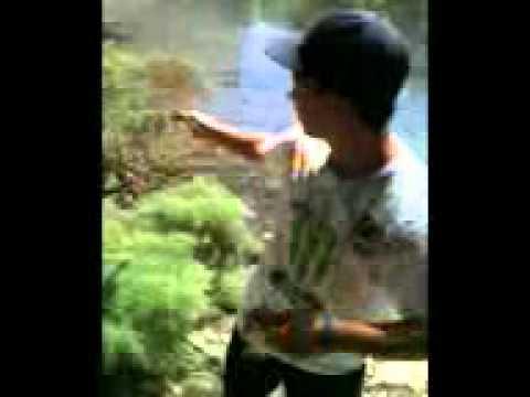 spro frog bass fishing