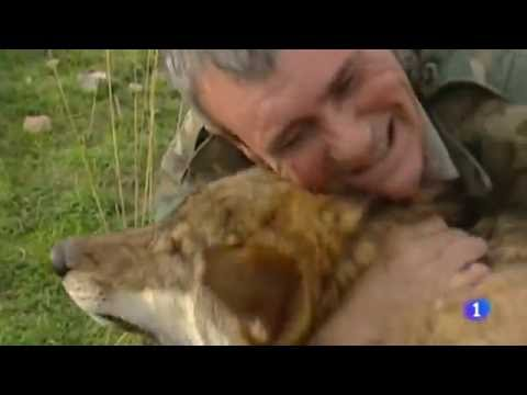 Video: Man raised by wolves says life among humans is disappointing