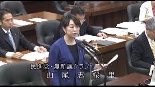 衆院法務委員会山尾志桜里議員質疑2017年5月19日