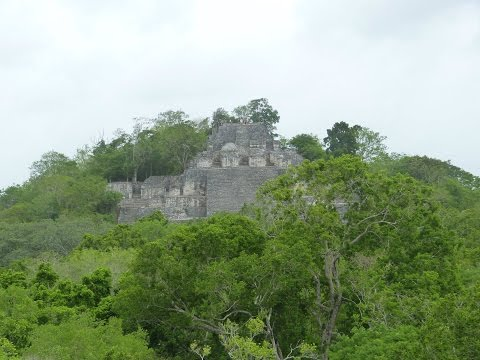 Mexico 2015 – Calakmul Biosphere Reserve – Operation Wallacea