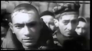 מי קידם את השואה בזרועות פתוחות