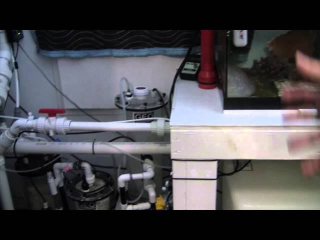 Seth's Amazing Aquarium Equipment Tour (180 Gallon Reef) 水族館