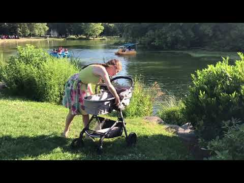 Stroller review | Evenflo Pivot | car seat and stroller review