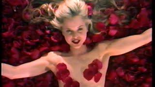 American Beauty (1999) Video