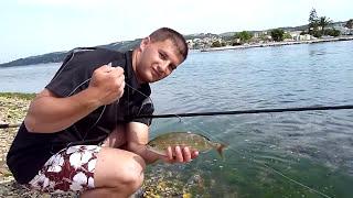 Pêche de la Saupe au flotteur [HD]