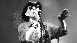ALABAMA 3 - THE OLD PURPLE TIN - BEARDED THEORY 2015 -