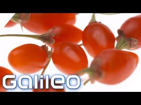 Food Trend aus China: So gesund sind Goji Beeren | Galileo | ProSieben