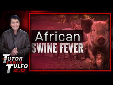 [Erwin Tulfo]  AFRICAN SWINE FEVER NASA PINAS ULI?