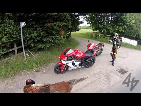 Ducati 1299 Panigale v 2015 Yamaha R1