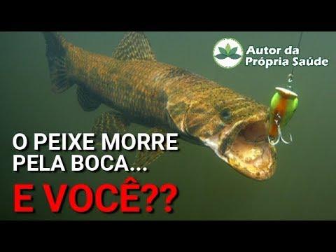 Autor da Própria Saúde - O Peixe morre pela boca...  E VOCÊ??