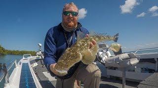 High Tide Flathead Fishing