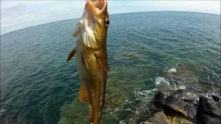 Ловля рыбы в сочи