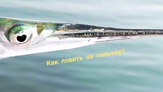 Все о рыбалке на черном море. артамонов