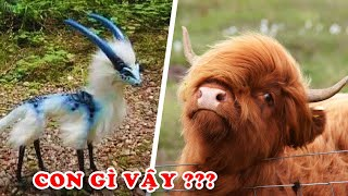 10 Strange Comedy Animals Not Belonging To The Earth You Don't Know