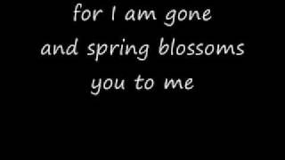 My Paper Heart-The All-American Rejects Lyrics Video