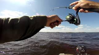 Река реня отчеты о рыбалке