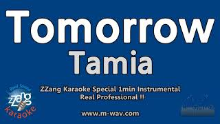Tamia-Tomorrow (1 Minute Instrumental) [ZZang KARAOKE]
