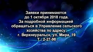 795 ОБЪЯВЛЕНИЕ СЕЛЬСКОЕ