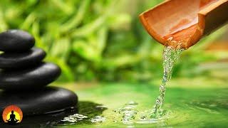 🔴 Relaxing Music 24/7, Healing Music, Meditation Music, Spa Music, Sleep Music, Study Music, Yoga