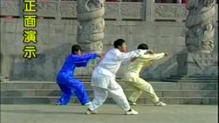 Фохань цюань  учебное видео 1