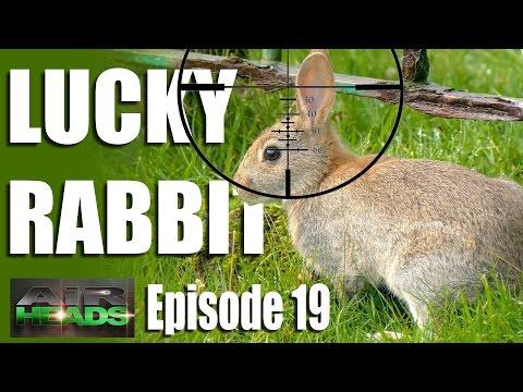 Lucky Rabbit – AirHeads, episode 19