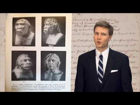 An Ape of a Hoax – David Rives