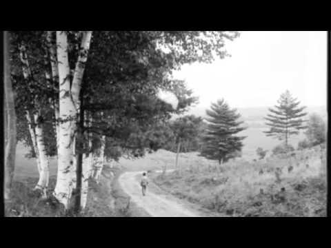 The Woodshedders - Virginia's Fair Daughters