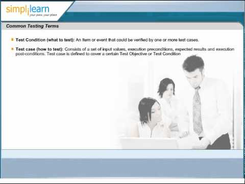 Common Software Test Terms | Test Case and Test Condition | What ...