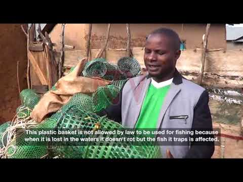 18 arrested in UPDF operation on illegal fishing