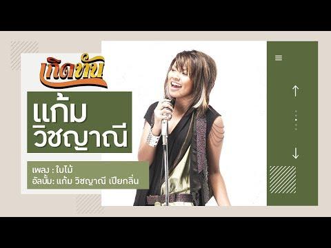 "Lyrics""ใบไม้ (Bai Mai)"" by Gam Wichayanee"