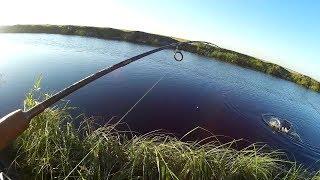 Рыбалка красный яр астраханской области