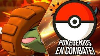 Donphan  - (Pokémon) - POKÉMON ULTRASOL & ULTRALUNA: POKEGENIOS EN COMBATE ¡DONPHAN TIENE QUE AGUANTAR!