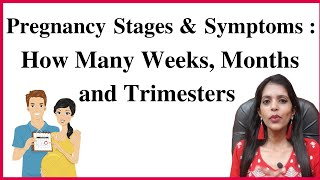 How to Calculate Pregnancy Weeks? How to Count Pregnancy Weeks? How Many Weeks in a Pregnancy? Month