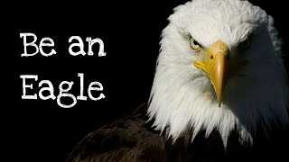 Be an Eagle || New Motivational Whatsapp Status & Quotes ||