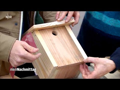 NDR Mein Nachmittag – Nistkästen selbst bauen
