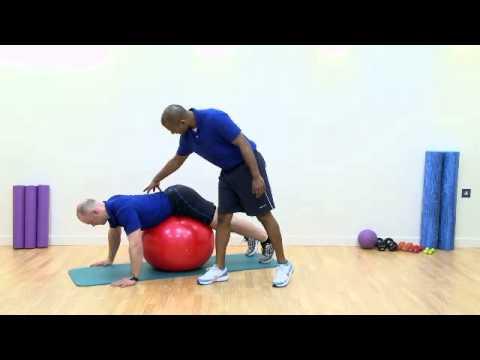 strength training exercises  how to exercise database