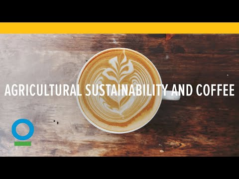The path to agricultural sustainability starts with coffee (Conservation International)