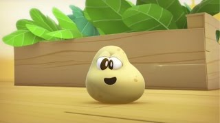Learn Fruits and Vegetables for Kids : The Potato