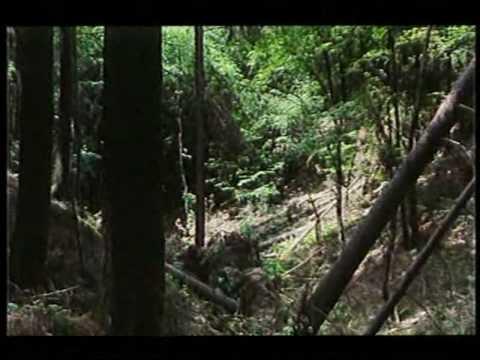 B.S.P. - Zeme vzdalena (official videoclip)