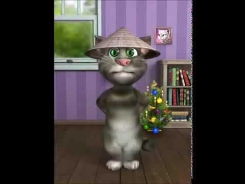 Mèo Tom nói giọng miền trung .....