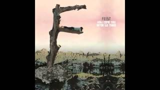 Feist - How Come You Never Go There (demo)